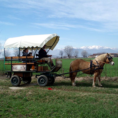 GIRO ROMANTICO in CARROZZA OFFERTO all'EXPO SPOSI IN di STUPINIGI