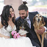 A SPOSI IN, DogLand Clamp Wedding Dog Sitter